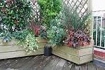 Wooden planters with integral trellis